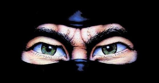 ninja eyes-1